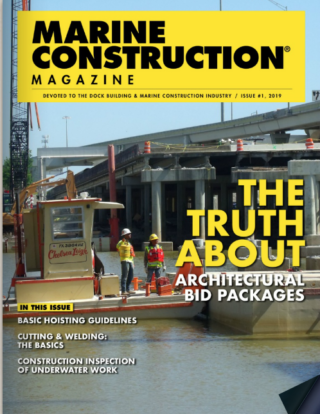 issue 1 2019
