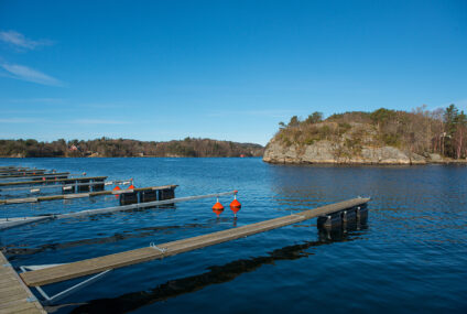DESIGN CONSIDERATIONS FOR FLOATING DOCK PILES
