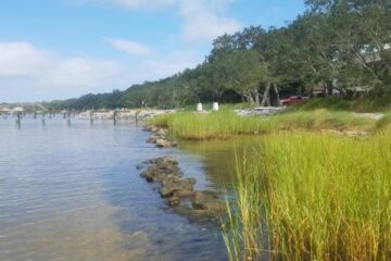 Living Shoreline Course for Marine Contractors to be Offered in April